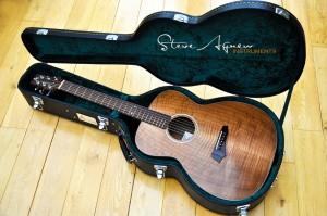 steve-agnew-instruments